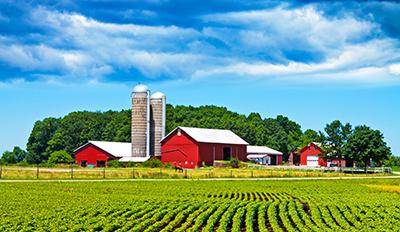 Farm Listings